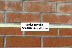 NS400 AntyLime